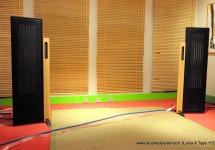 DIPTYQUE AUDIO : des panneaux isodynamiques d'un naturel confondant.